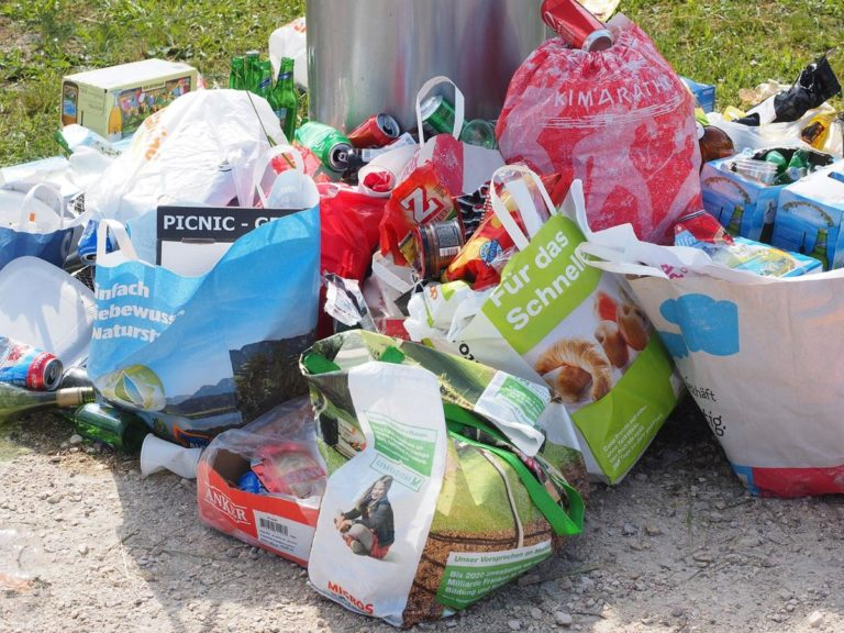 Wybierz odpowiednie pojemniki na zbieranie odpadów